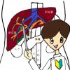 肝臓の位置、大きさ、働き、肝機能検査の数値、エコー(超音波検査)の見方について