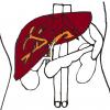 【初心者向け】腹部エコー(超音波)画像と疾患の見方~肝臓編~